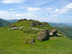 en pays basque intrieur la maison ziberoa et ses chambres dhtes de charme vous accueille saint jean pied de port